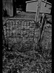 Iron Gate by xroxyfoxyx