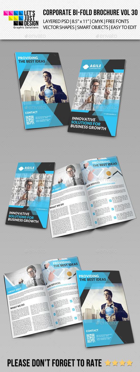 Creative Corporate Bi-Fold Brochure Vol 30 by jasonmendes