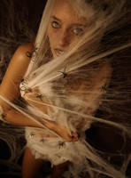 Spider Queen by CorrosivePhotography