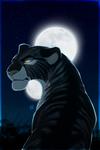 Moons [Commission]