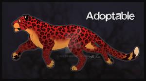 Leopard Adoptable Auction
