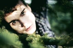 fir green ii by farbanomalie