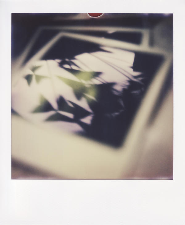 polaroid love by farbanomalie
