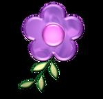 Pink purple flower