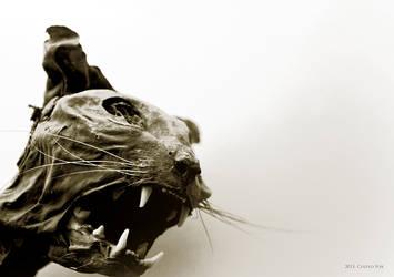 Felidae by Camera-Silens