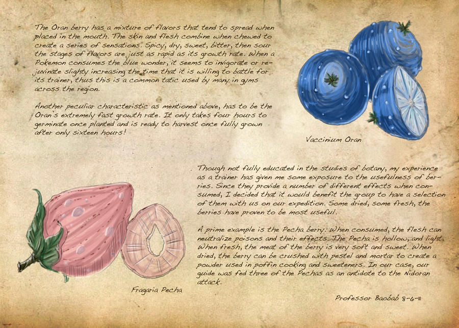 Field Guide: Pg. 28b Berries by CasteelArt