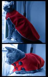 cat sweater by lostprescription