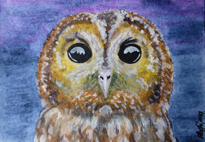 Tawny Owl-ACEO by Actlikenaturedoes