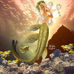 Golden Tailed Mermaid
