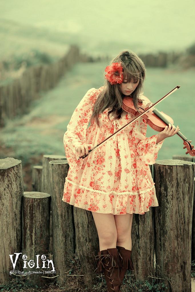 Violin - 2 by Mi-kako