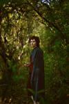 Frodo Baggins. Dark Forest