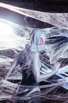 Spider Gwen: Web