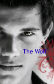 Taylor Lautner is the wolf by SmallIsland