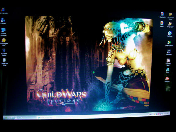 Guild Wars Desktop