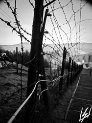 Barbed Wire Fence 2.0 by USMedia