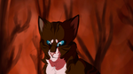 Hawkfrost by Sprouteeh