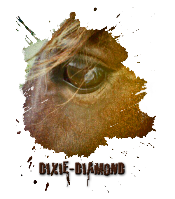 Dixie-Diamond's Profile Picture