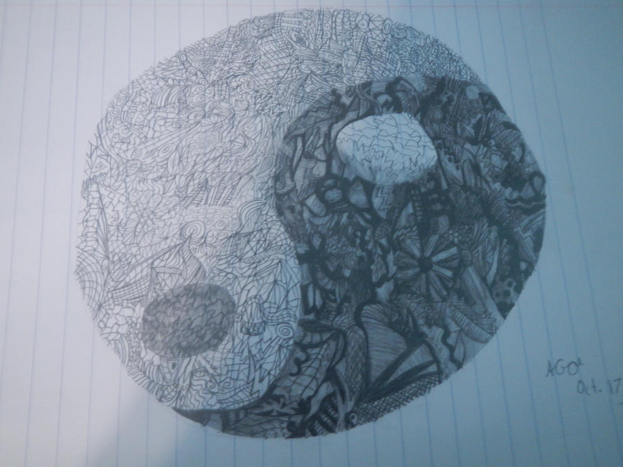 Finished the Yin and Yang Sketch