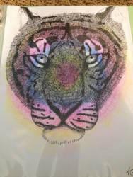 Tye-Dye Tiger