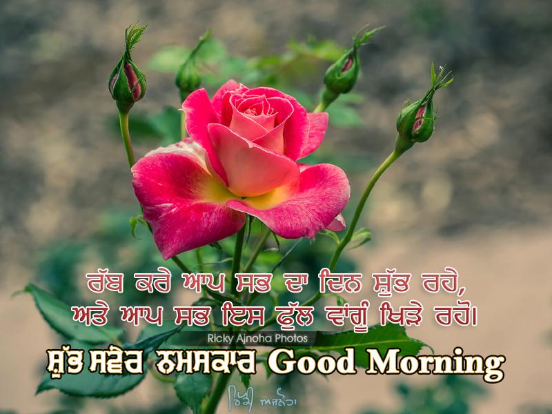 Good Morning Punjabi By Ricky Ajnoha 2016 By Rick720 On Deviantart