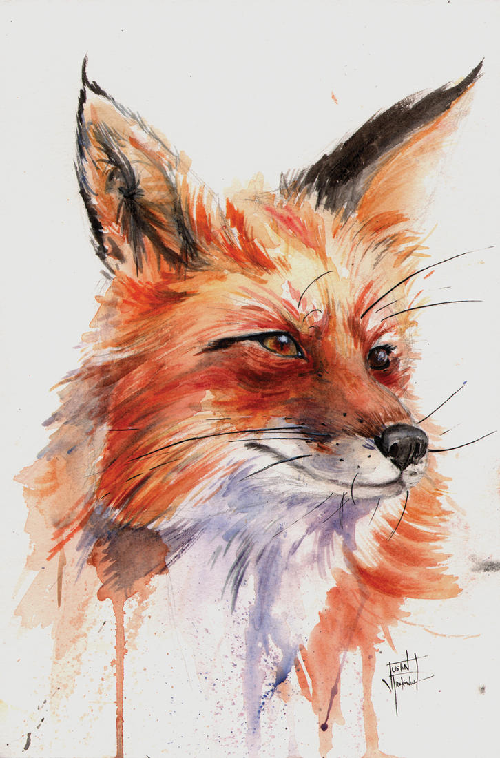 how to draw a fox face
