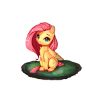Fluttershy (new look) sorta