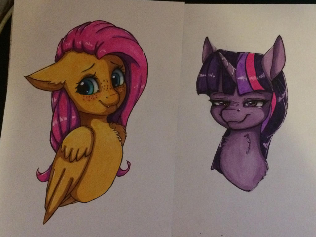 Fluttershy and Twilight Sparkle