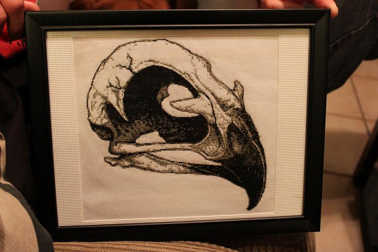 Hawk Skull XStitch by sazoidx