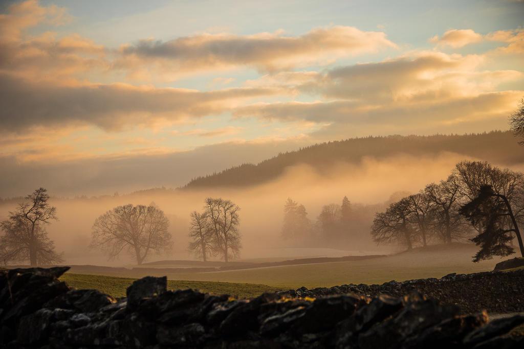 Misty morning by hevva1989