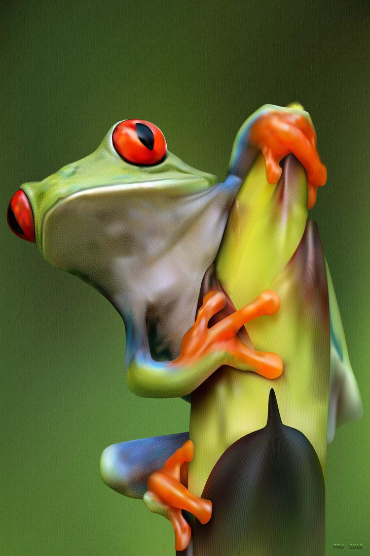 Colorful Tree Frogs Jumping