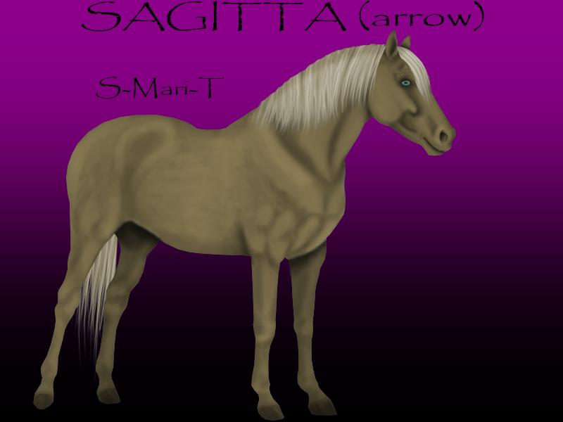 SAGITTA by S-Mari-T