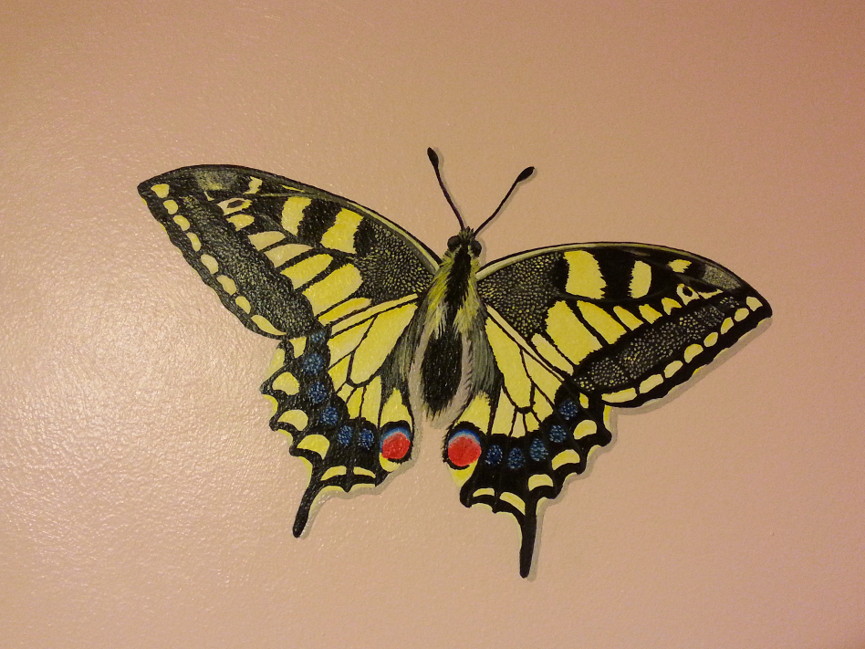 Uk butterflies mural painting by muralsedge on deviantart for Butterfly garden mural