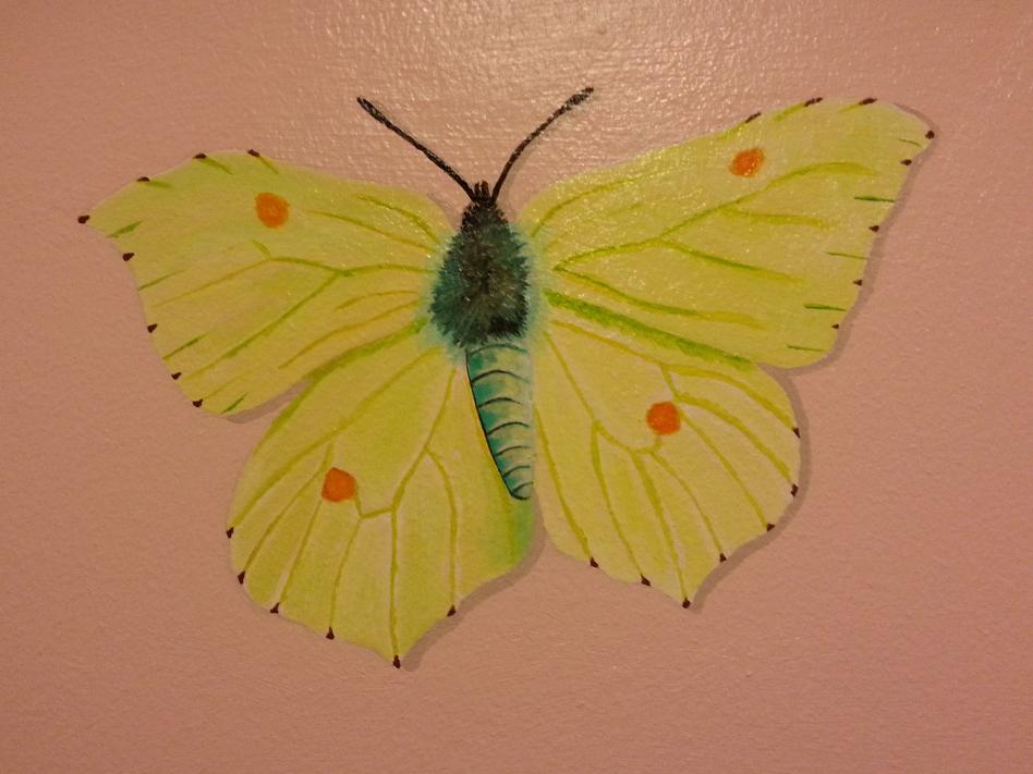 Uk butterflies mural painting by muralsedge on deviantart for Butterfly mural wallpaper