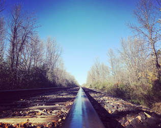 Oblivion Tracks  by artemis09337