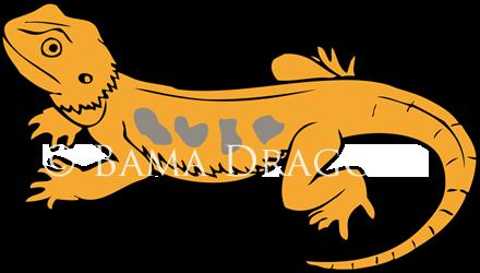 Bama Dragons Logo by AkiAmeko