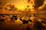 Goldie Sunset