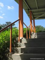 Phoenix Park 5 - Orange by sarahcoldheart