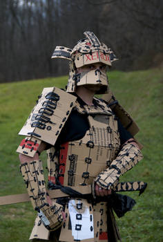Xerox Samurai No.7