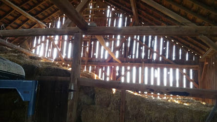 Barn Interior 1 by steve1932