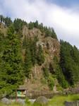 Stock~ Eagle Cliffs ~ WA