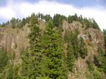 Stock~ Eagle Cliffs ~ WA~3