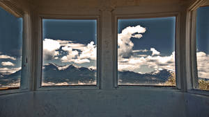 windows II