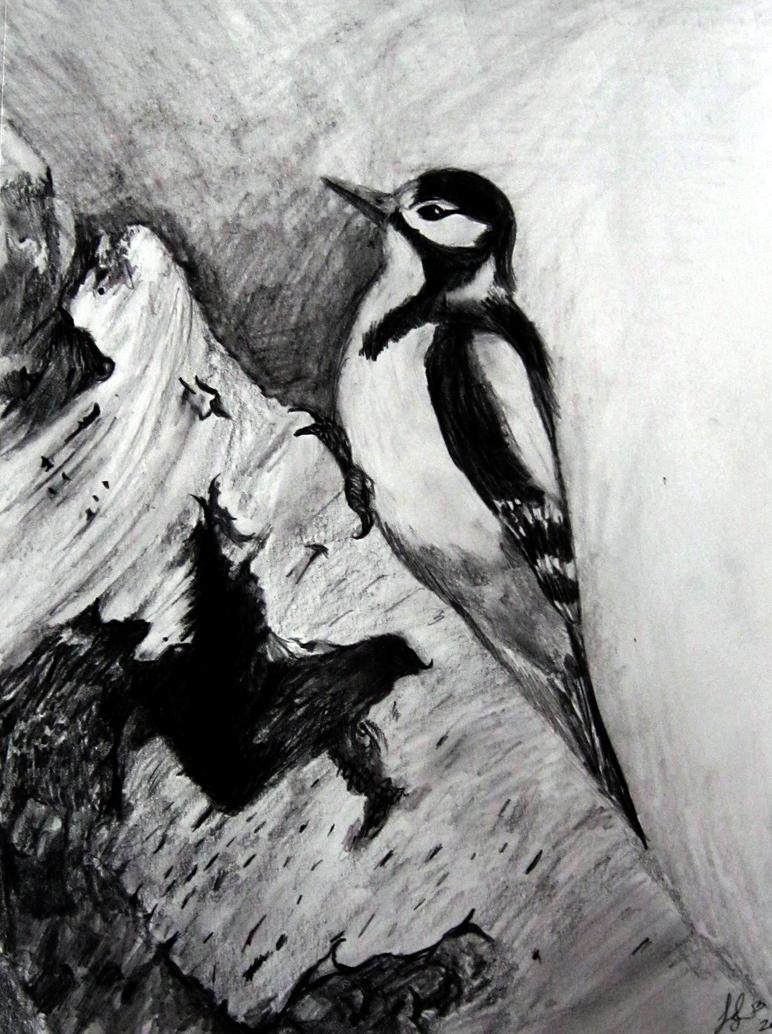 Great Spotted Woodpecker by snakegirl94