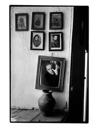 Family tree - Self Portrait 95 by Stephane-Burlot