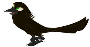 Atzin The Crow...