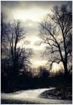 Silhouettes by Disturbiah