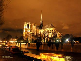 Paris: Notre Dame by quadricula