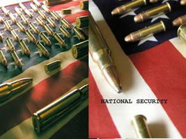 National Security by johnlukepishard