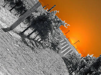 Old wIne New Day by johnlukepishard