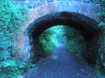 Mystic path3
